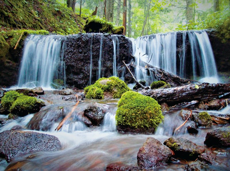 阿寒の森の水巡り プレミアムツアー | TSURUGAアドベンチャーベース【SIRI】