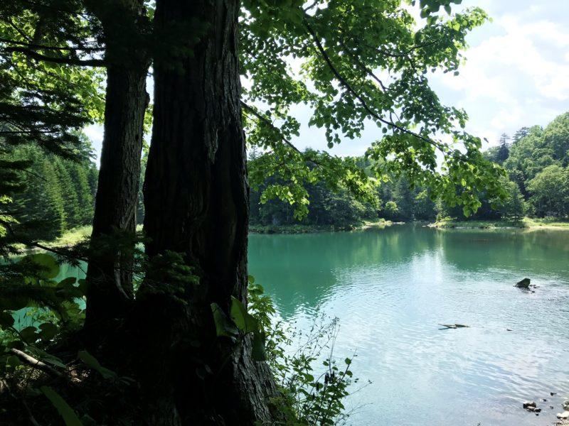 神秘の秘湖トレッキング |  TSURUGAアドベンチャーベース【SIRI】